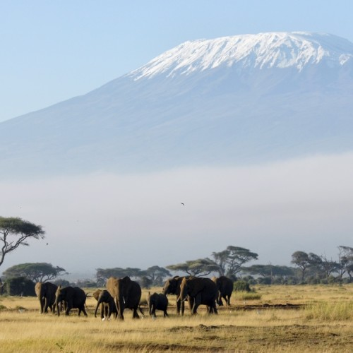 Kilimanjaro (5892m)