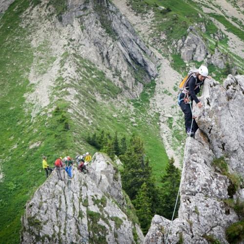 Gais Alpins 2015
